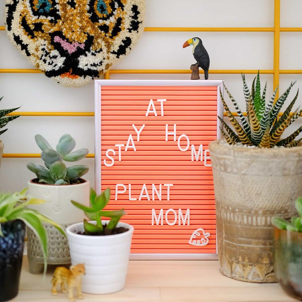 planten quotes letterbord plant