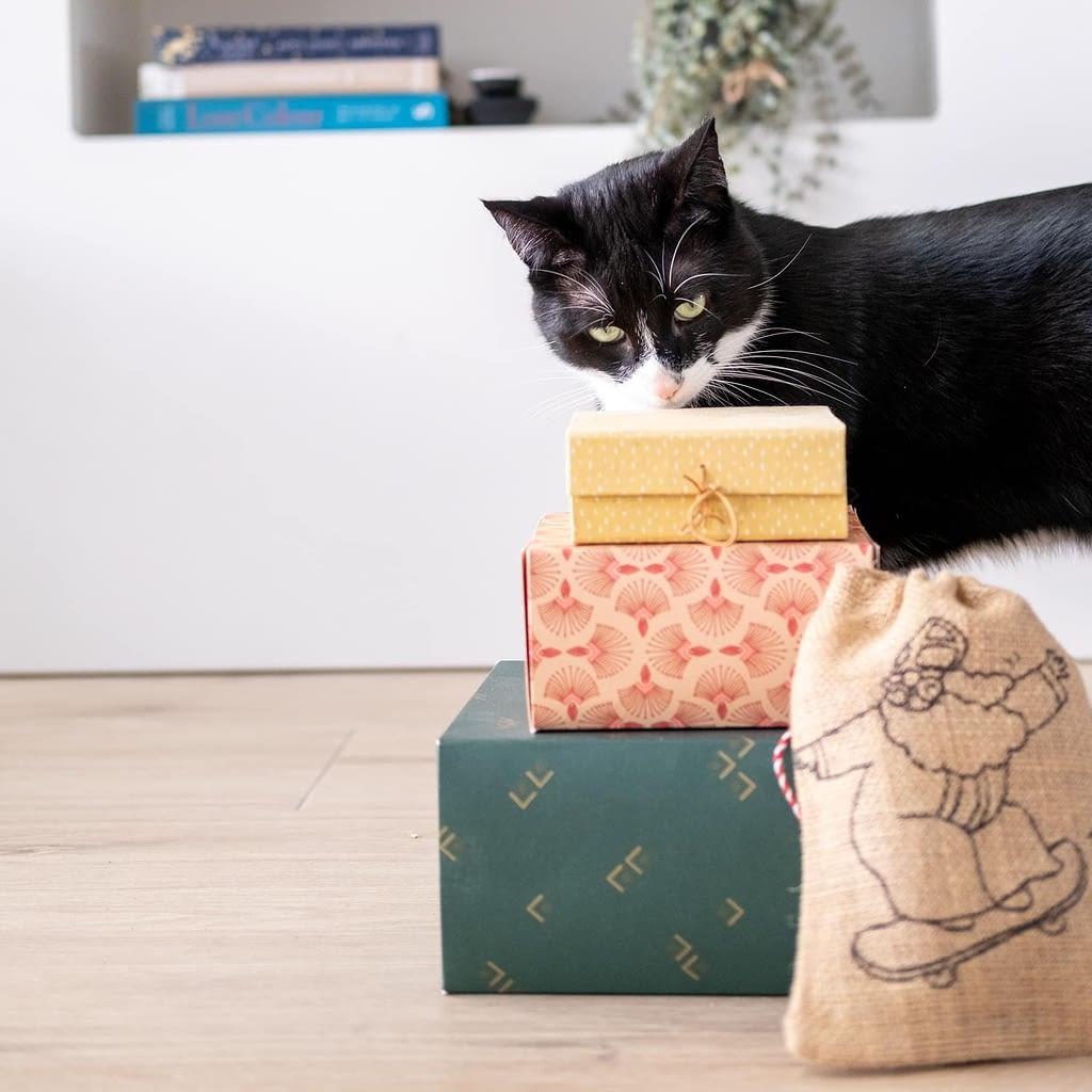 sinterklaas cadeaus voor de kat tips