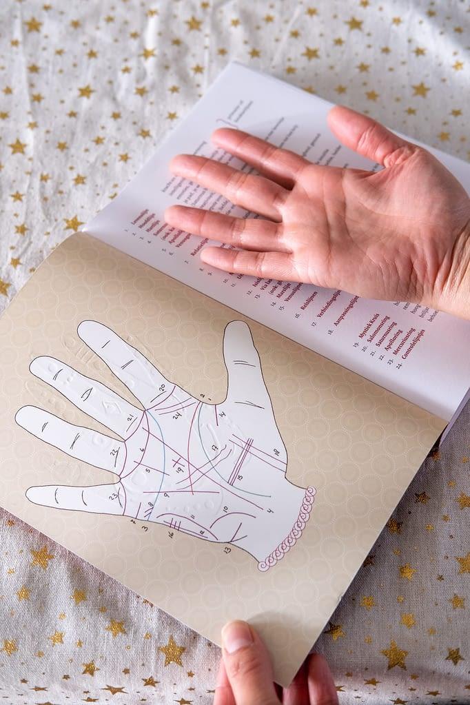 cursus handlezen boek